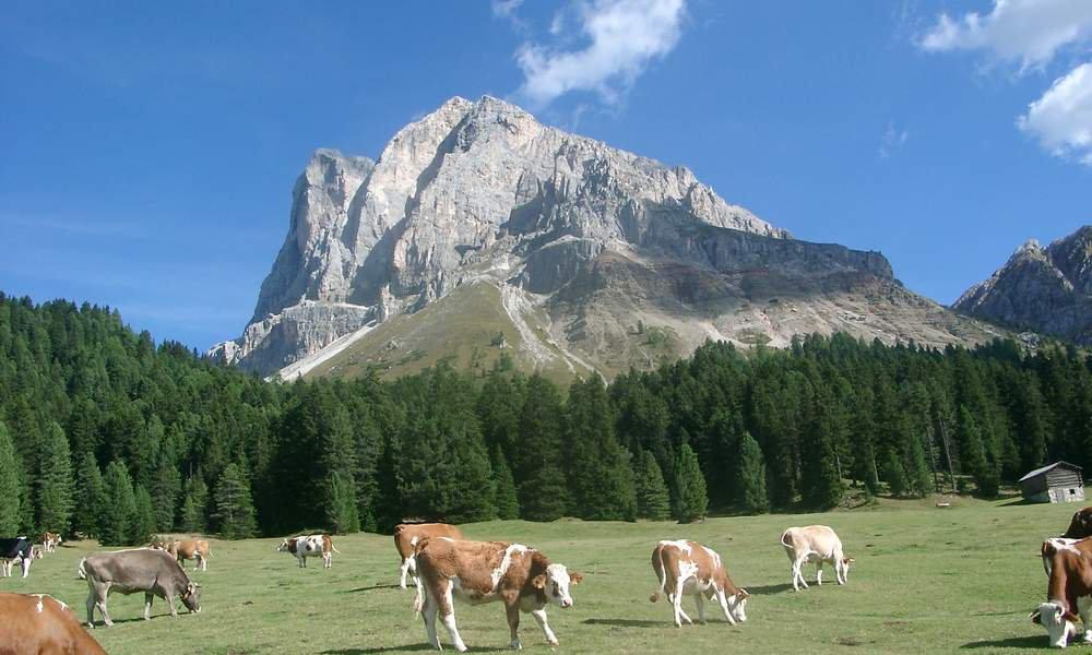Alle cime dell'Alpe di Luson