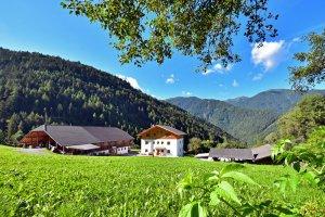 bacherhof-bauernhofurlaub-luesen