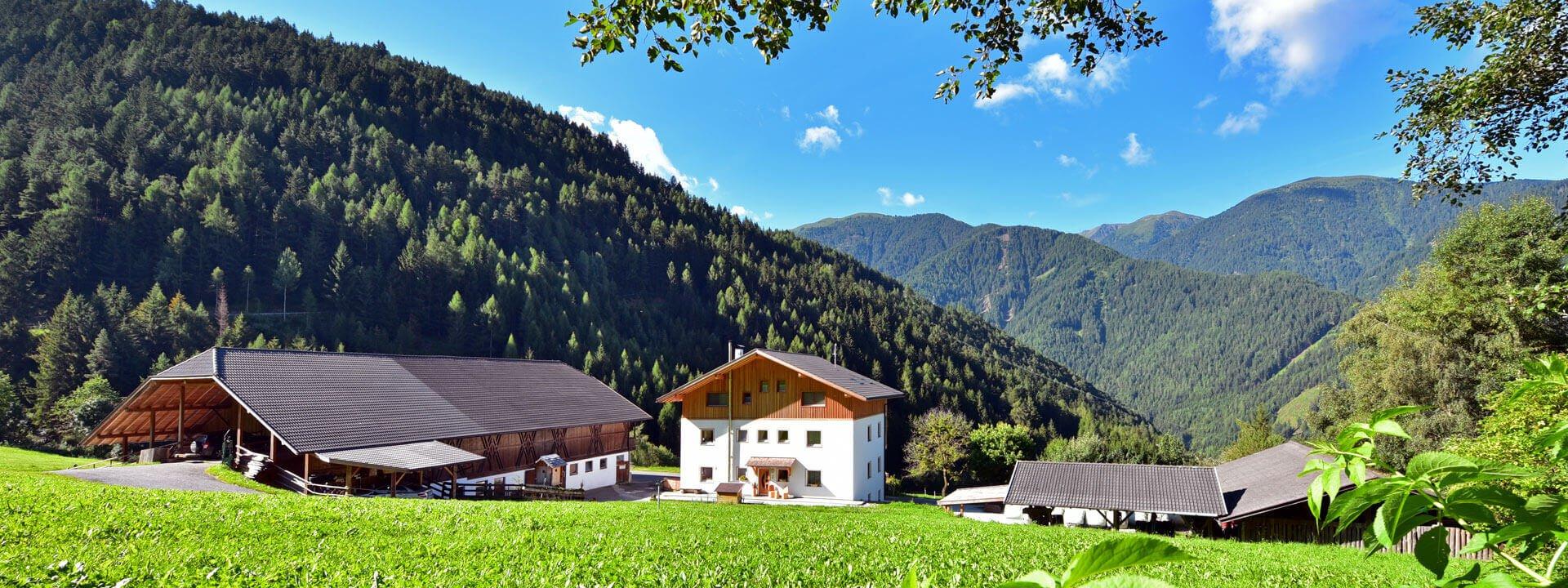 bacherhof-ferienwohnung-luesen-07